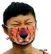 Jaguar_mask__code
