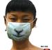 Sheep_mask_code